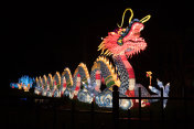 Dragon at Chinese Lantern Festival