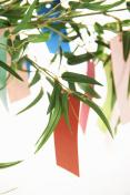 Tanabata Festival image