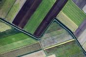Aerial photo of farmland geography