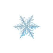 Snowflake isolated on white background