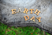 Earth day word on wood background