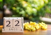 Wooden calendar on wooden desk show the date of April 22 , earth day with nature background