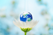 safe the earth with love
