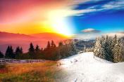 Beautiful landscape in four seasons
