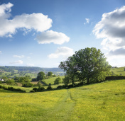 Beautiful Rural Landscape In The Cotswolds