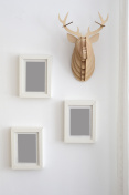 picture frames on wall next to decorative fake antler