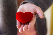 female hands holding red heart, health care, love and family insurance concept, world heart day, world health day