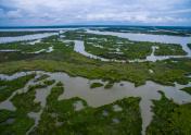 Wetlands Marsh Delta near Texas Louisiana Border