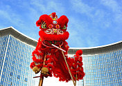 Chinese lion costume (for Spring Festival celebration)
