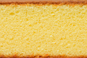Close-up photo of a piece of sponge cake