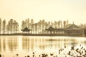 Chinese garden gazebo in the lake