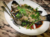 Chinese Food - Steamed Fish with Ginger and Scallion