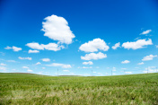 Bule sky and grassland