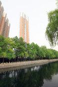 City River scenery