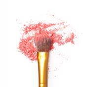 Makeup brush with make up powder
