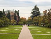 Quandrangle lawn at the University of Washington