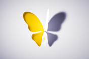 Cut out Paper Yellow Buttlerfly