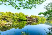 Beautiful Hangzhou West Lake Garden in the summer,China