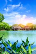 Beautiful Hangzhou West Lake Garden in the summer