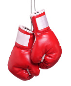 Pair of leather boxing gloves isolated