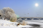 bridge and trees in the snow, cityscape