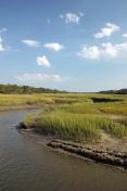 Marshlands of the Georgia Coast