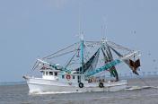 Shrimp Trawler Off Coast of Jekyll Island Georgia