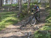 Mountainbiking with electric bicycle on a bumpy single trail, Austria.