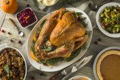 Organic Free Range Homemade Thanksgiving Turkey