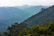 Slope of the rainforest. Yanoda Rain Forest. Hainan, China.