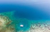 Catamaran and Reef Aerial