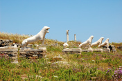 Alley Of The Lions. the island of Delos, Greece