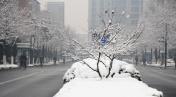 Snow in Hangzhou