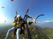 parahawking,fly with hawk