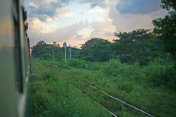 Lush green vegetation and countryside in the heart of Myanmar, between Yangon and Mandalay