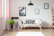 Simple living room with fern
