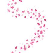 Seamless Pink Rose Petals Curve
