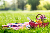 picnic basket and blanket outdoors