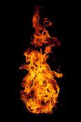 Burning flame isolated on black