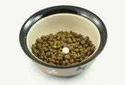 Dog food supplements on dog food