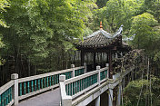 Old Chinese wooden bridge in Beijing forest
