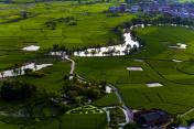 Farmland in yangshuo