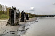 old piers on river beach