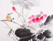 kingfisher and Lotus flower watercolor painting