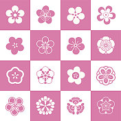Petal patterns of plum blossom