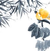 Lotus bud and bamboo. Flowers illustration..
