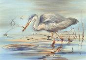 water bird in the lake watercolor