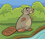funny beaver cartoon illustration