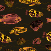 Seamless patterns with tropical fish