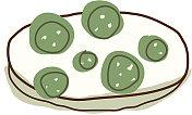 The cucumber slices